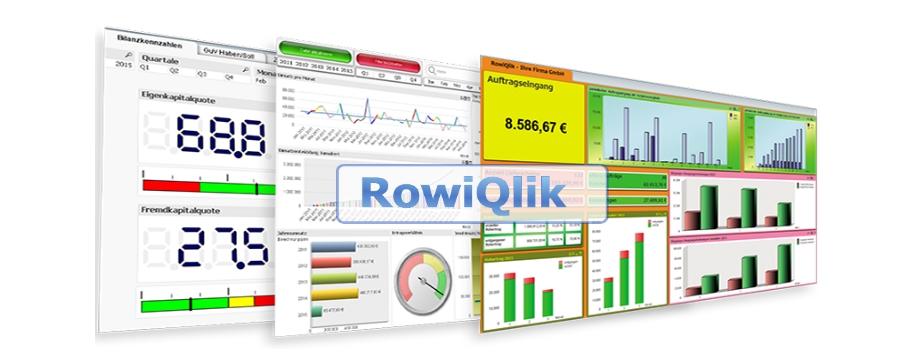 RowiQlik - Rowisoft Blue Auswertungssoftware